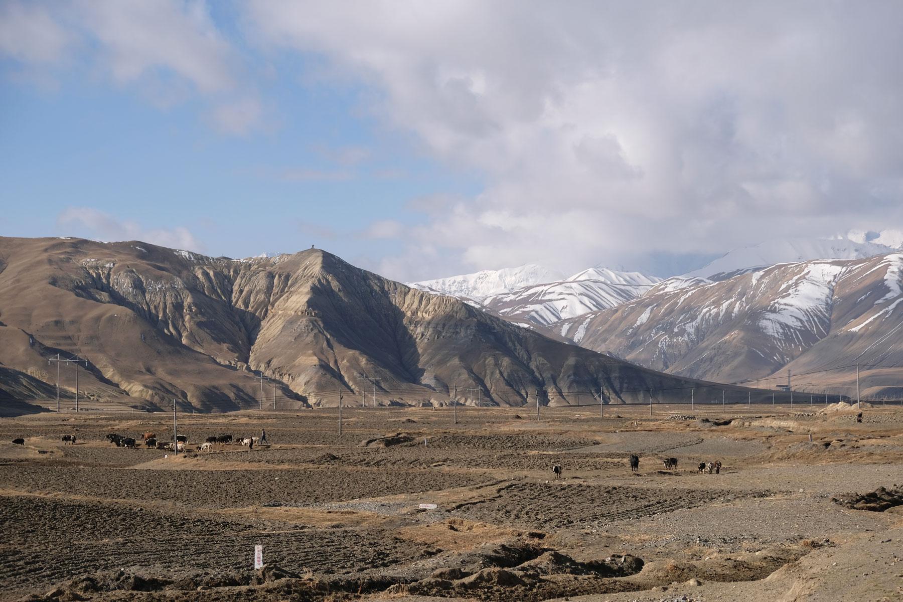 Auf dem tibetischen Plateau werden vor allem Kartoffeln und Zwiebeln angebaut.