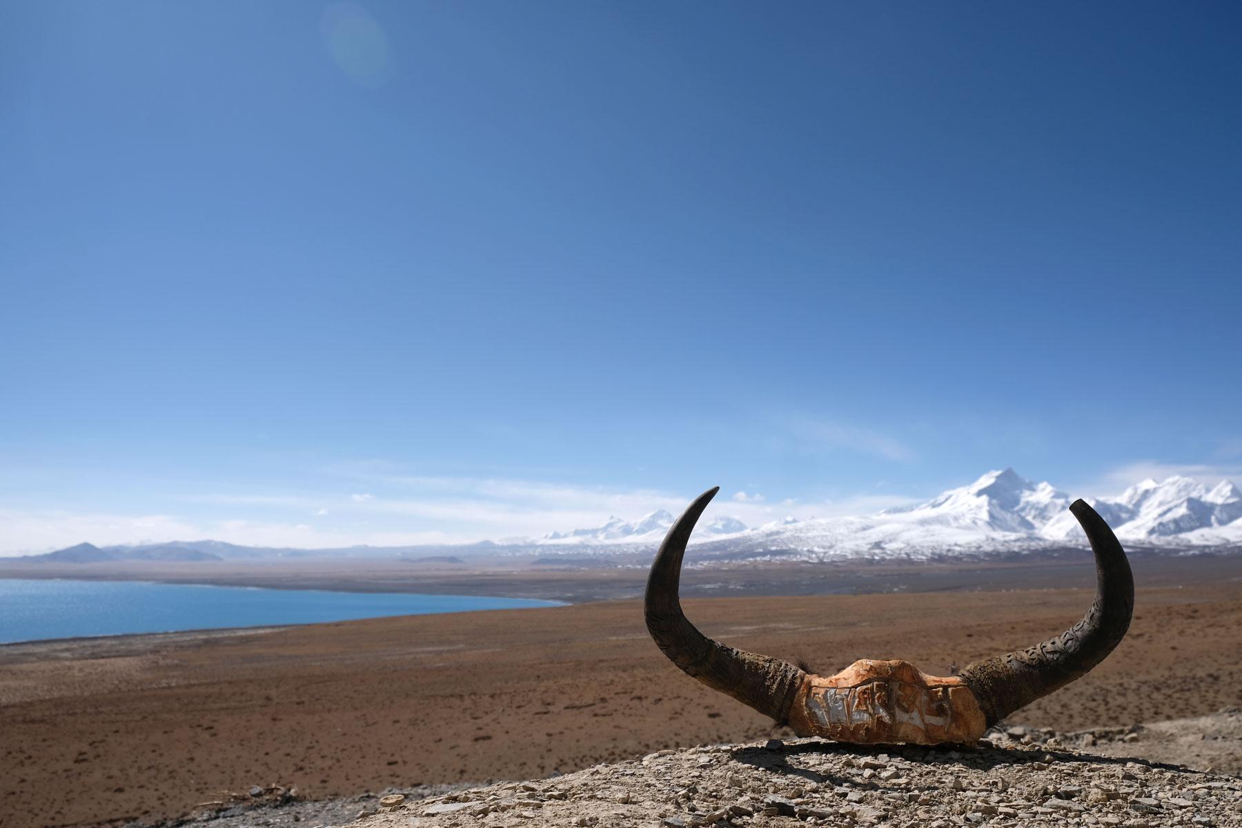 Hörner liegen auf einem Stein vor einem See im tibetischen Hochland.