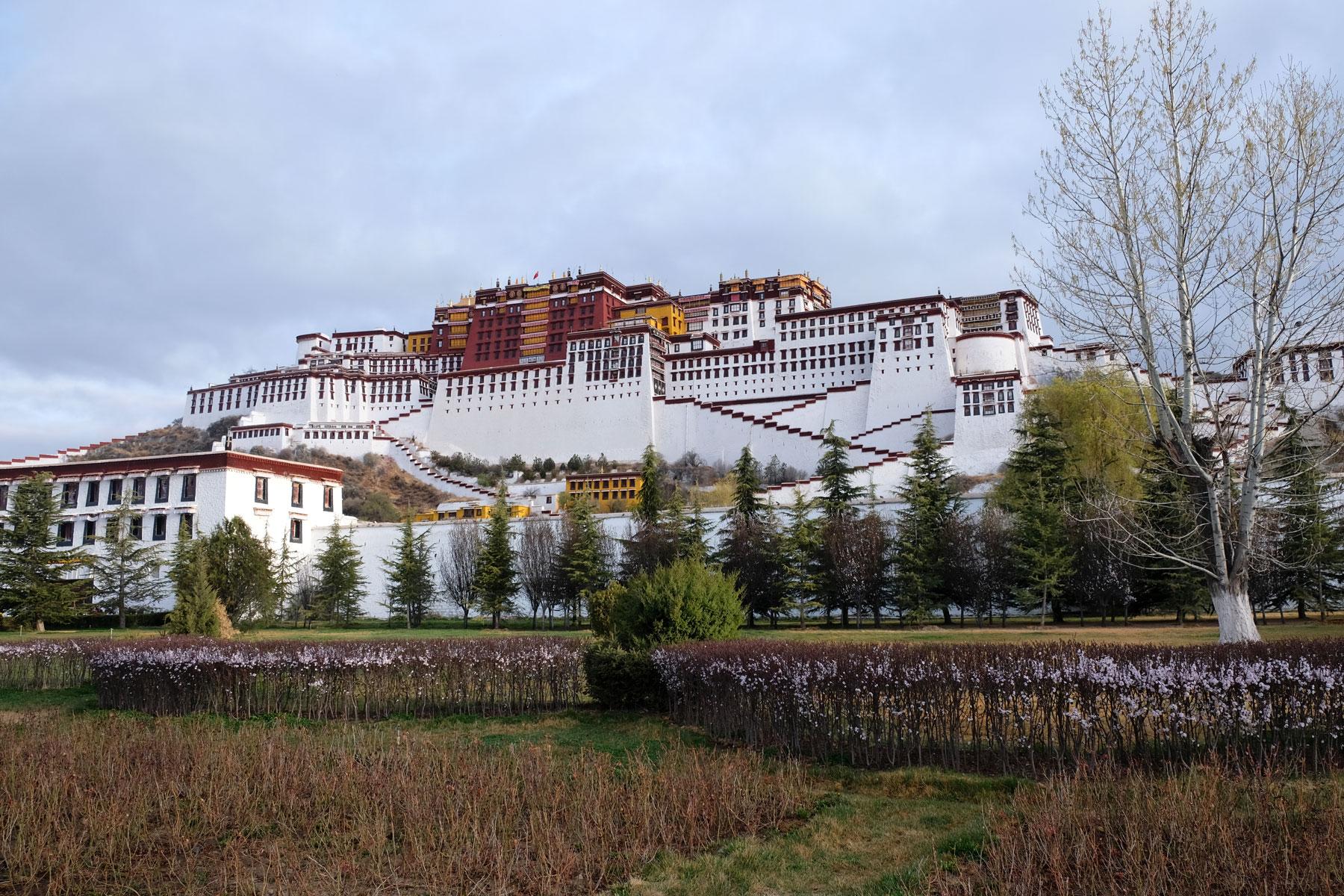 Der Potala-Palast des Dalai Lamas erhebt sich über der Blumenwiese in Lhasa in Tibet.