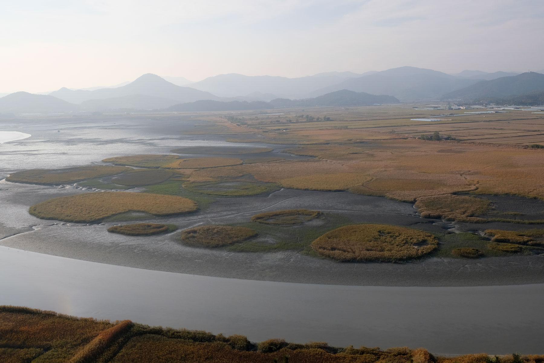 Blick von oben auf das Suncheon Wetland Reserve in Südkorea.