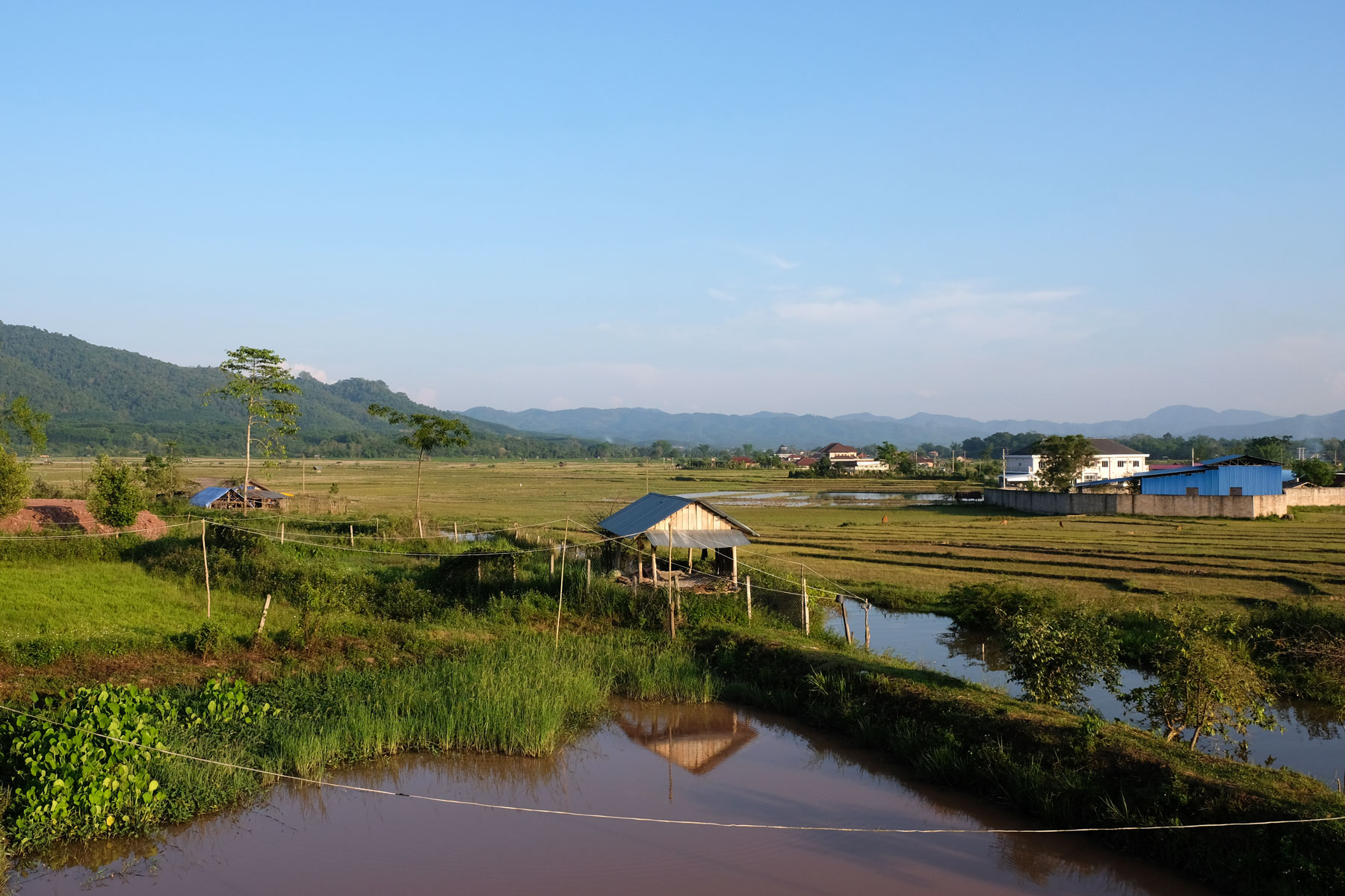 Eine Hütte und Felder bei Luang Namtha.