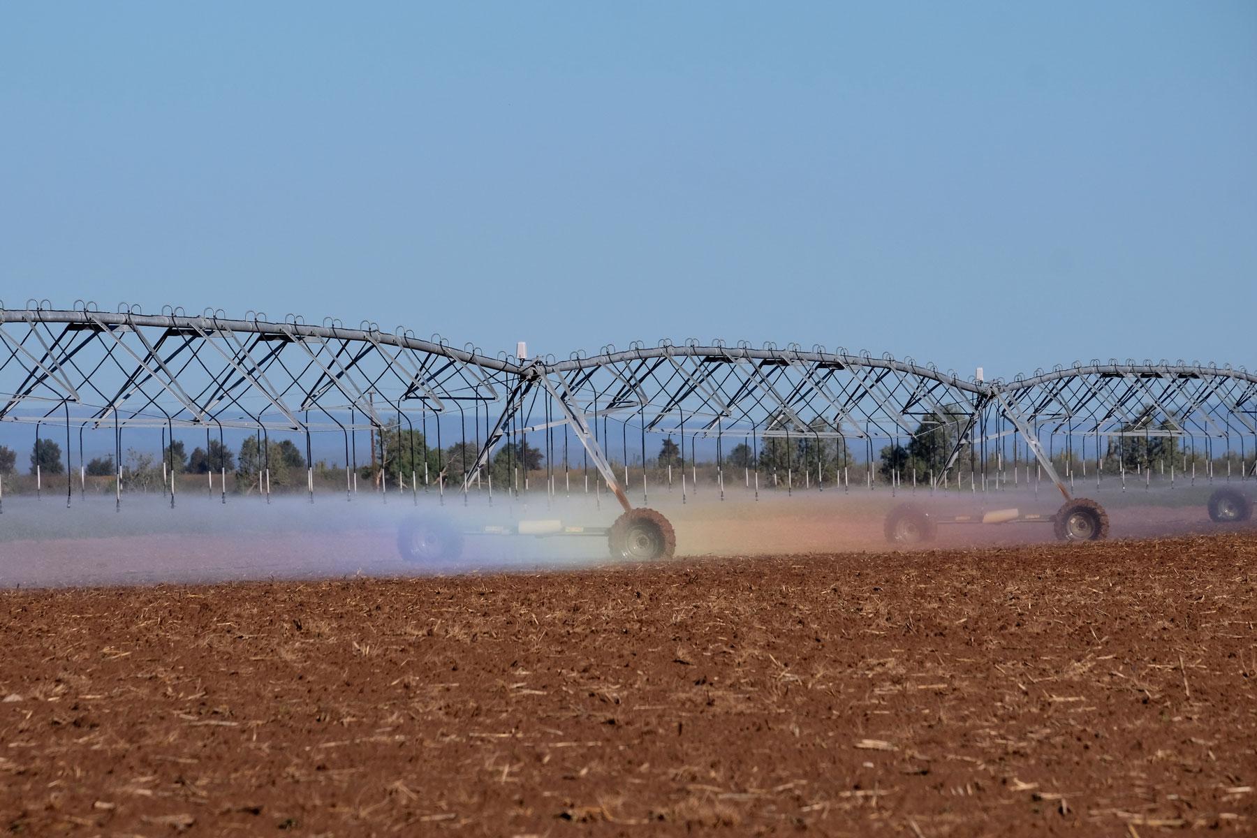 Ein Feld wird bewässert auf der Baja California in Mexiko.