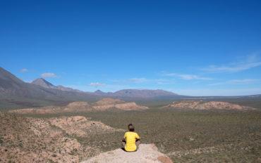 Leo sitzt mit Blick auf die Weite der Baja California auf einem Felsen.