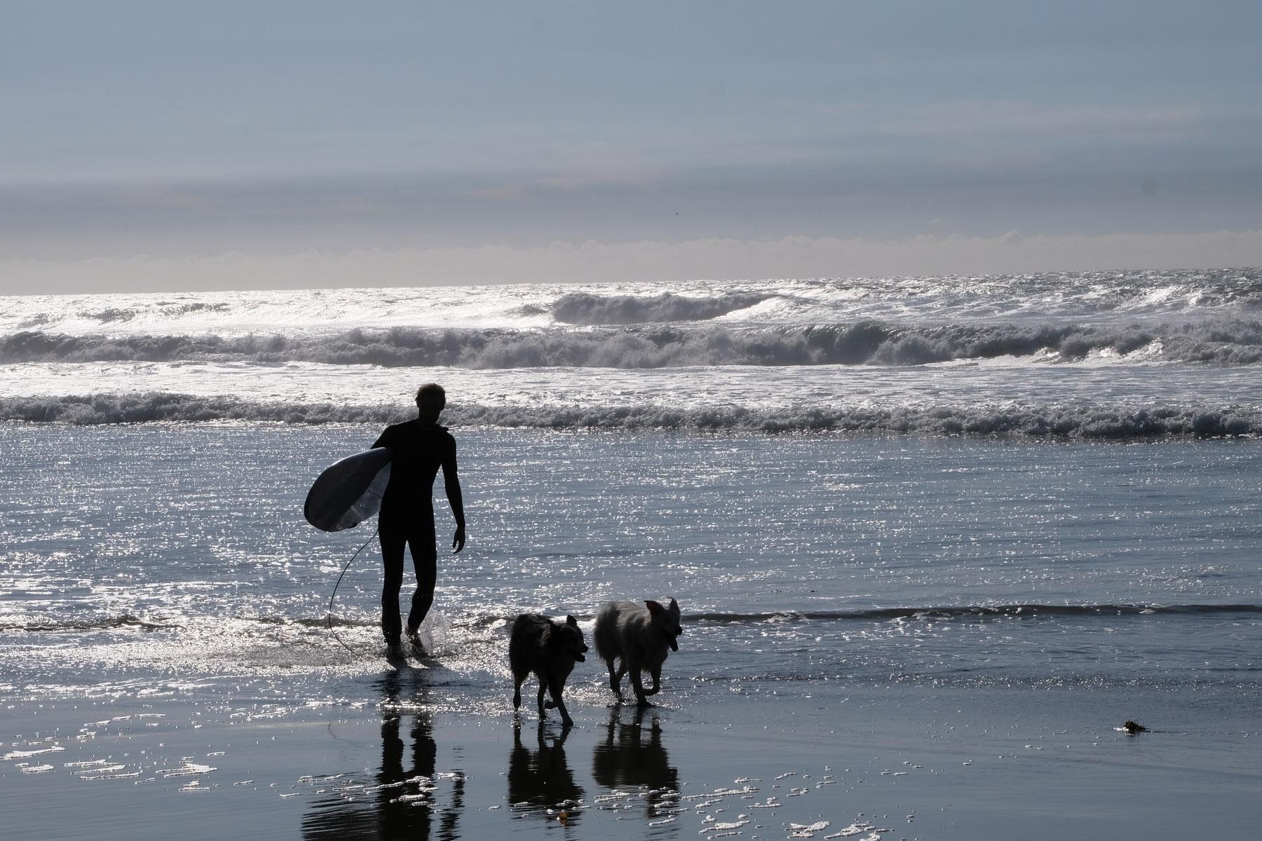 Sebastian läuft mit unseren House Sitting Hunden am Strand von Mexiko.