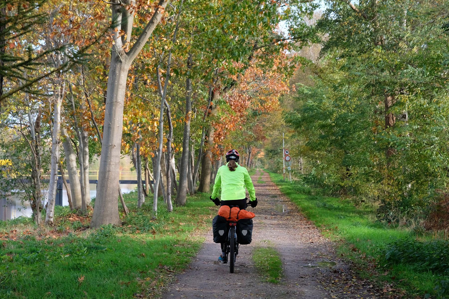 In Norddeutschland fährt Sebastian mit dem Fahrrad durch den Wald.