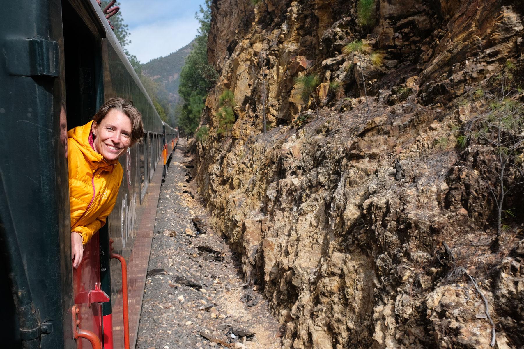 Leo schaut aus dem fahrenden Zug Chepe im Norden Mexikos.