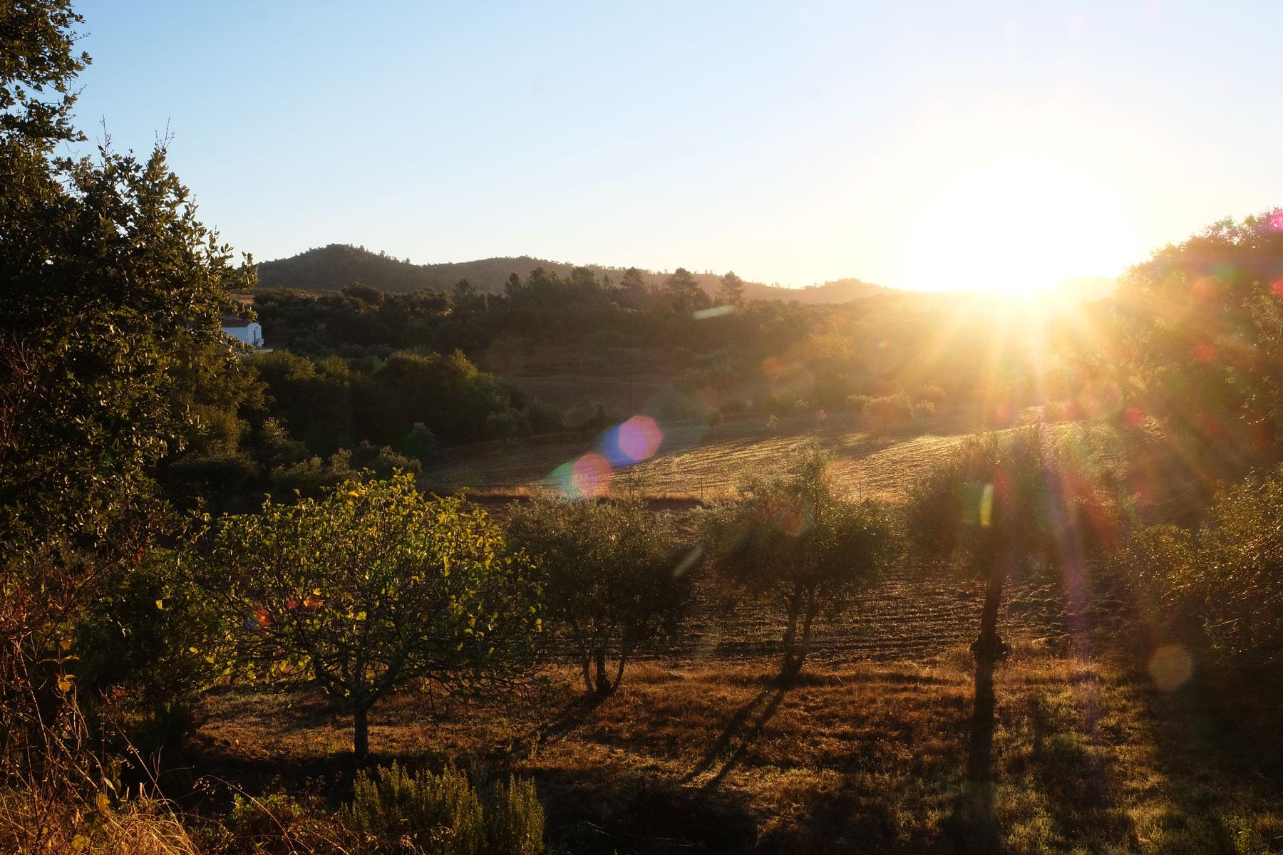 Sonnenaufgang in Portugal.